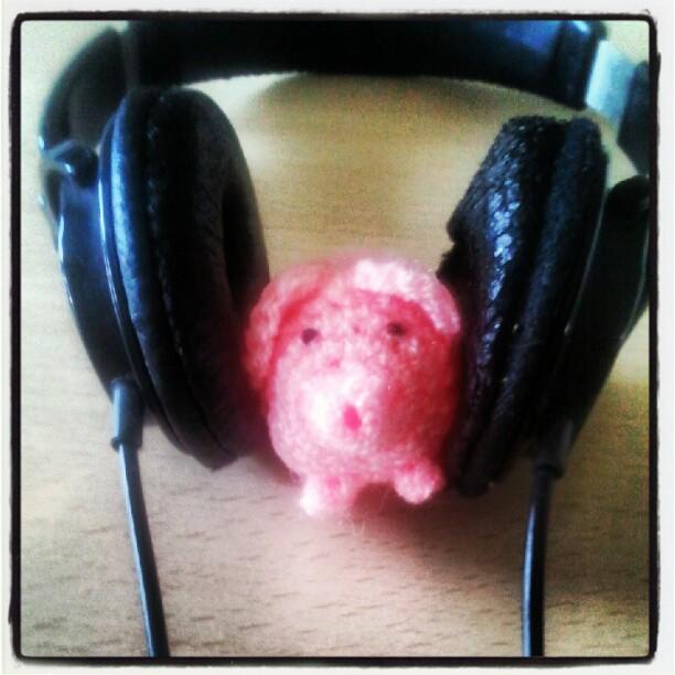 Haekelschwein hört NiN.