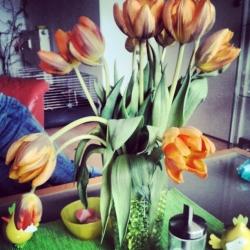 Blumentrend 2012.