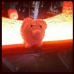Das Haekelschwein.